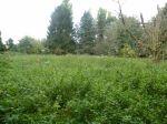 Vente terrain Faverolles - Photo miniature 1